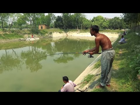 Best Mrigal Fishing Video Scenes By Fish Watching