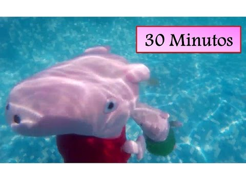 Peppa pig bucea en la piscina y en el mar 30 minutos de for Peppa pig en piscina