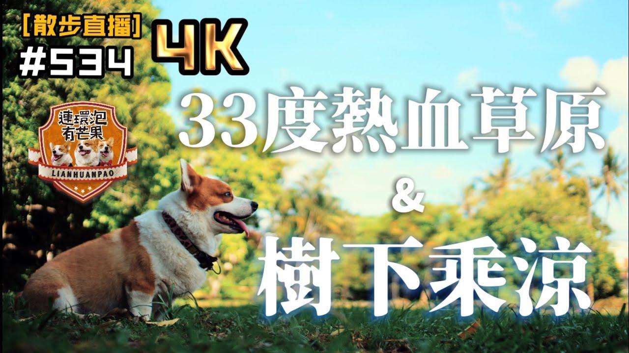 [散步直播]534_熱血草原與乘涼/4K