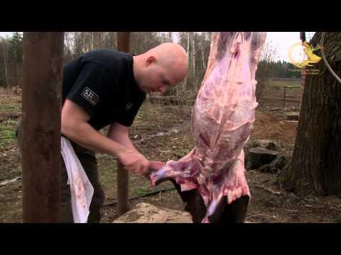 Поедание свиного мяса во сне сулит человеку заболевания, связанные с пищеварительной системой, а также кровеносные болезни.