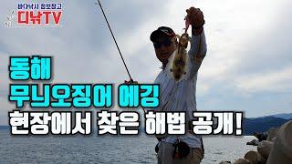 워킹 무늬오징어 에깅 테크닉, 동해안 최고의 에깅 낚시…
