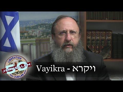 Weekly Torah Portion: Vayikra