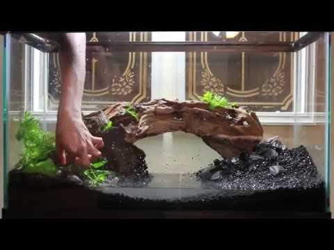 how to set up an aquascape