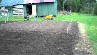Starting To Plant The Seeds #03 Heirloom Organic Vegetable Garden