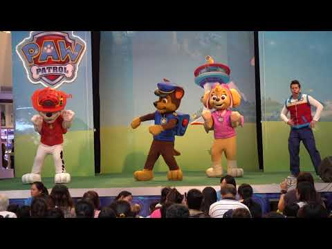 Paw Patrol live show - Pups to the rescue