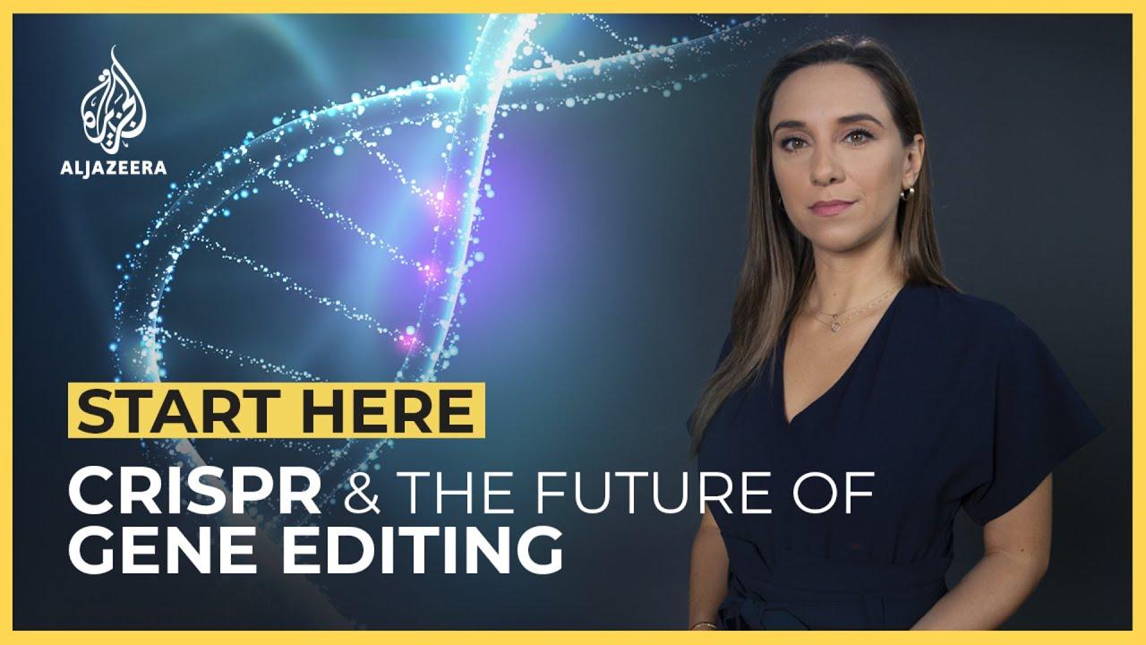 CRISPR : What is the Future of Gene Editing?