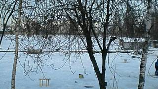 Зимняя рыбалка у Бородина.AVI.