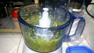 philips food processor funky pesto recipe