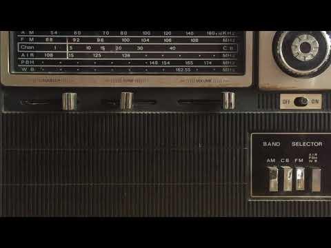 NIGHT OF DARK SHADOWS RADIO SPOT