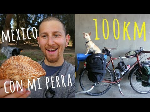 Cycling 100km WITH MY DOG In Mexico || Tijuana to Ensenada