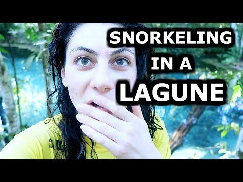 EPIC SNORKELING! - TRAVEL VLOG 293 BRAZIL | ENTERPRISEME TV