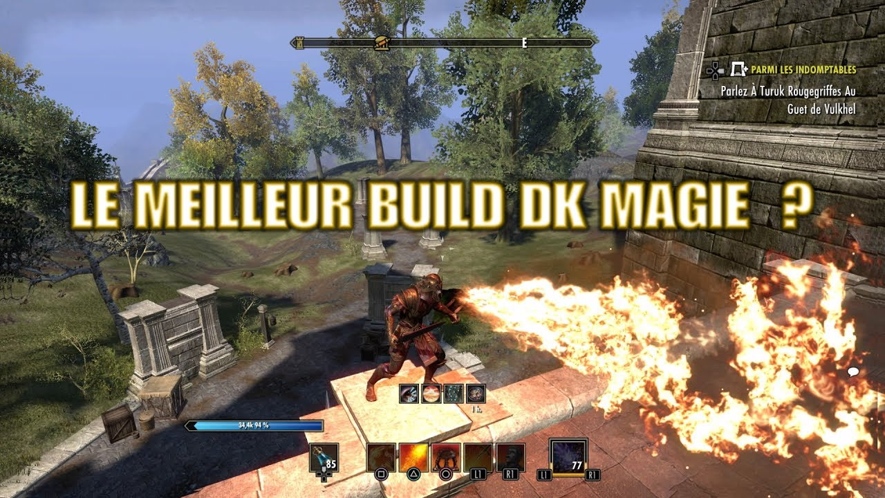 Teso Chevalier Drangon Build