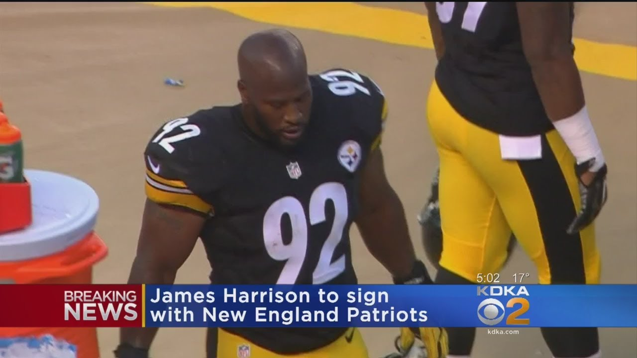 James Harrison Signs With The Patriots - YouTube c9a2efd10