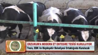ERZURUM'A MODERN ET ENTEGRE TESİSİ KURULUYOR