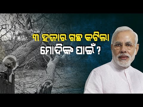 Thousands Of Trees Cut Down For PM Modi's Helipad In Balangir