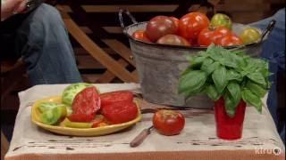 Tomato Superstars |Bill Adams |Central Texas Gardener
