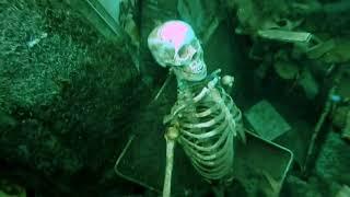 Ужасные находки водолазов.Жуткое видео | Horrible finds of divers.