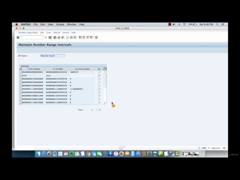 010 Defining Number Ranges For Material Types In SAP MM