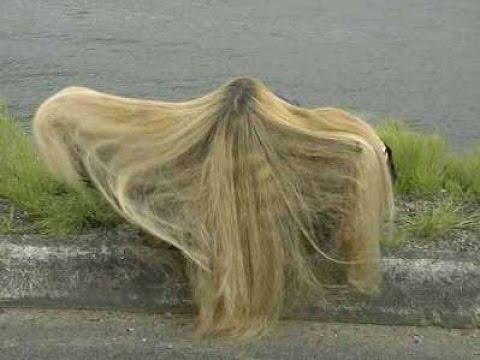 Самые длинные волосы в мире | The longest hair in the world