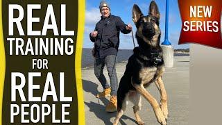 Reality Dog Training REVEALED!