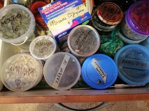 Как хранить травы в домашних условиях