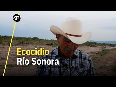 Las consecuencias del derrame en el río Sonora