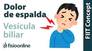 vescula biliar y dolor de espalda dorsal y cervical qu relacin tienen