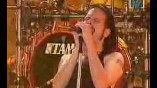 Korn-Faget (Live)