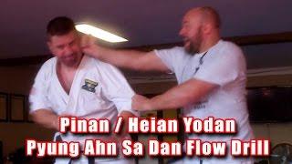 Practical Kata Bunkai: Pinan / Heian Yodan (Pyung Ahn Sa Dan) Flow Drill