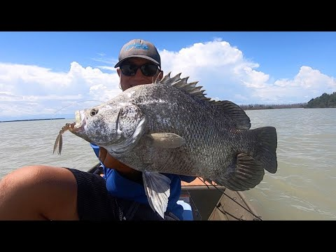 Early Summer Inshore Fishing ACTION!! (From The Florida Keys To The Everglades!)
