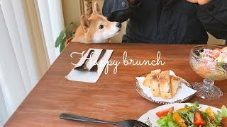 강아지와 함께하는 주말 브런치 브이로그 (vlog)  | 시바견 니케