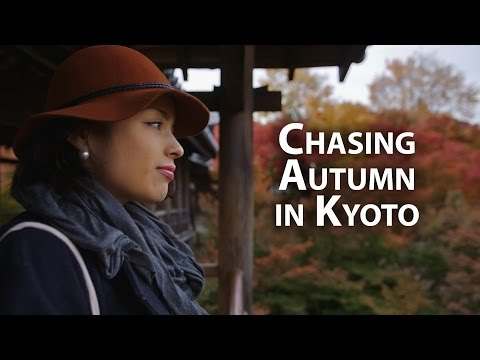 beautiful-kyoto:-the-most-amazing-autumn-momiji-leaves-in-kyoto-京都の美しい紅葉