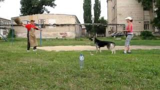 SHARLOTTA-AMALIYA  KATTYVAL защита