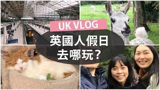 UK VLOG: 珍珠奶茶|燈籠節????|貓咪 cafe????|英國假日生活 ????????