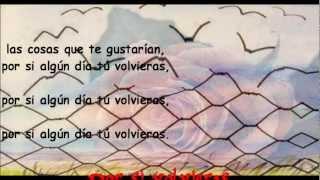Jorge Rojas, Por si volvieras (Letra)
