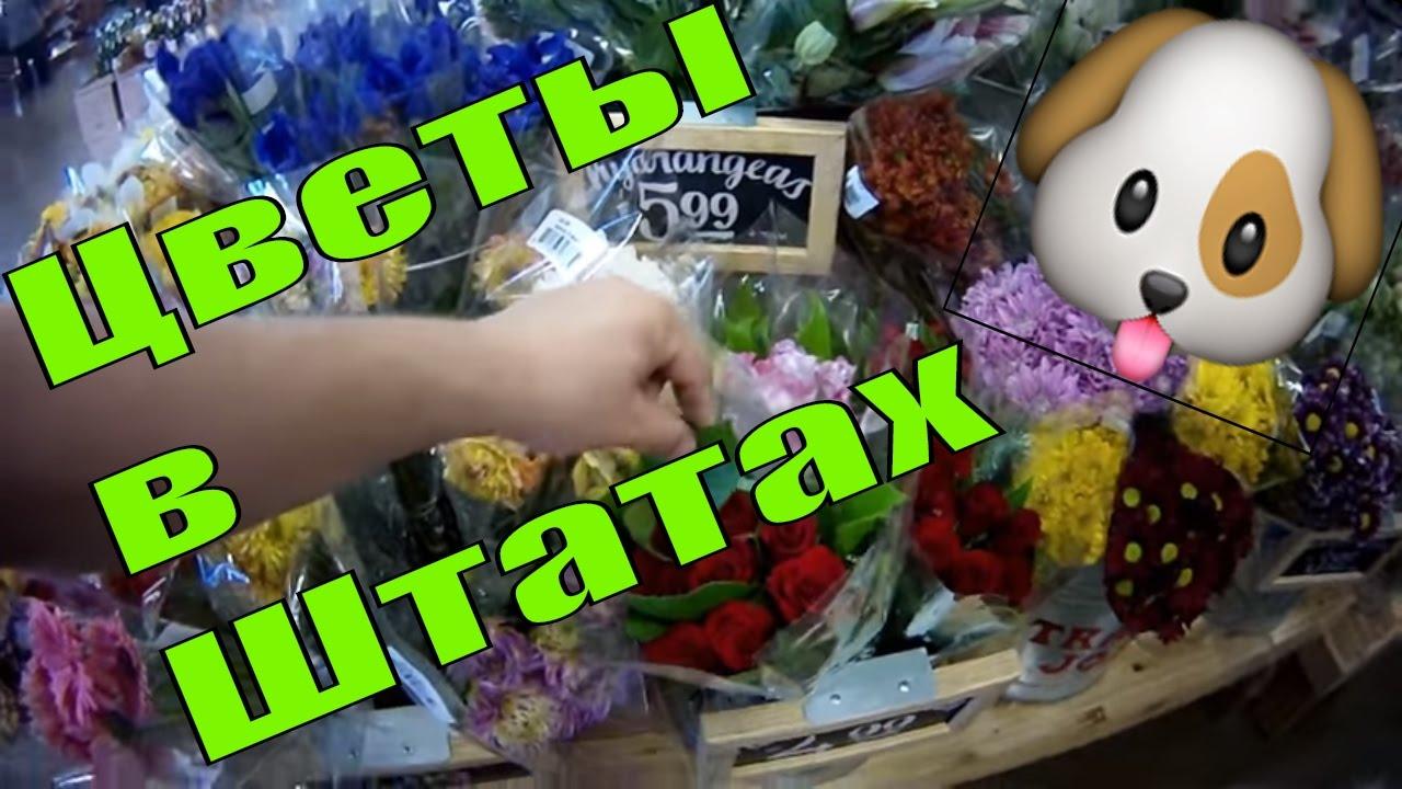 Пищевые красители гелевые в магазине baker store в санкт-петербурге и москве – яркие и стойкие оттенки для мастики, теста, глазури. 239. 0. От 2: 221. 2; от 12: 184. 0. Есть в наличии. 1. 12177. Купить 5 балл(ов). 0. 12176. Краситель гелевый пищевой красный коралловый 21 г americolor coral red.
