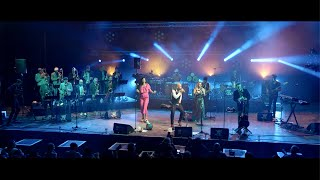 ¿Who's The Cuban? Orchestra - Descarado (Live au Nancy Jazz Pulsations)