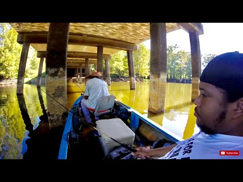 Crappie Fishing & A Few Surprise Catches! Slab Searching! Catfish, Garfish, Bowfin!