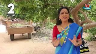 Telugu Actors About Ammammagarillu Movie   Naga Shaurya   Shamili   NTV Entertainment
