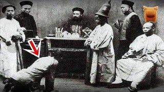 1909年「清朝」末期官員歷史照片,妻妾成群,膀大腰圓,犯人開庭跪地不敢抬頭直視...【楓牛愛世界 - HD】