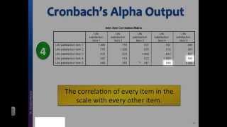 Reliability test Interpret Cronbach&#39s alpha output in SPSS