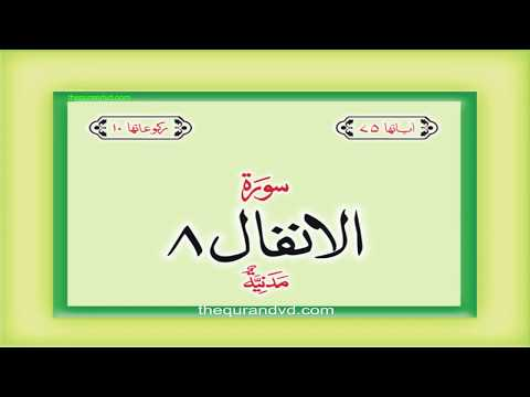 Surah 8 Chapter 8 Al-Anfal HD complete Quran with Urdu Hindi translation