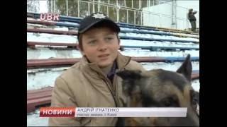 В Сумах організували перший чемпіонат серед службових собак. #UBR 17.10.2016