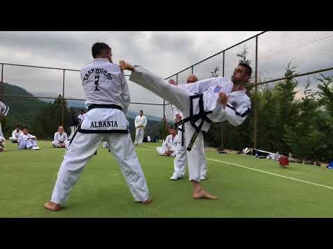 GM Vasilis Alexandris - Exercises to improve kicking (ITF Taekwon-Do Summer Camp Greece 2018)