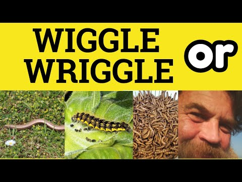 Wriggle or Wiggle - Wriggle vs Wiggle - Difference Meaning Examples - ESL  British Pronunciation