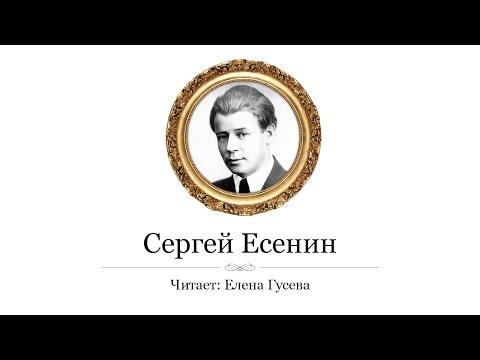 Стихи о осени для детей - стихи про осень русских поэтов