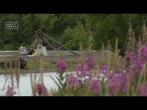 Медведь съел рыбака  | Новости сегодня | Происшествия | Масс Медиа