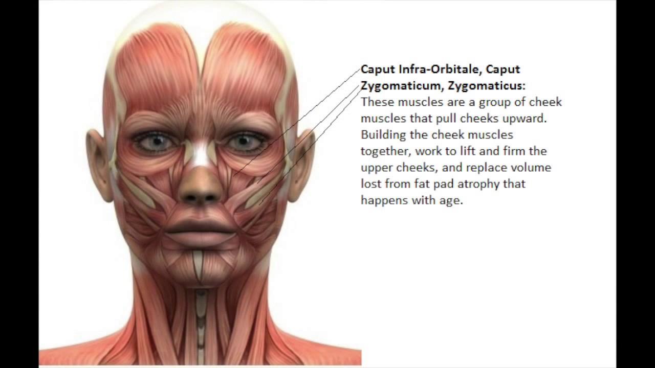 Facial Exercise Videos 42