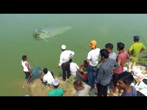 20 Kg Black Crap Fish Catching By Hook - Big Fish Hunting With Hook In Village Pond-Festival Fishing