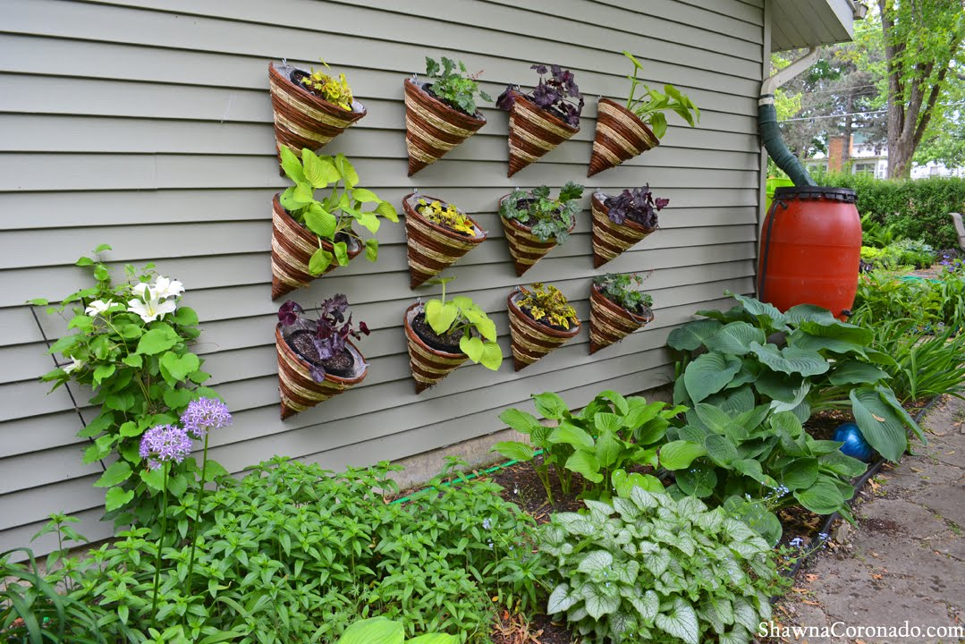 how to make a living wall garden out of cone planters - Wall Garden